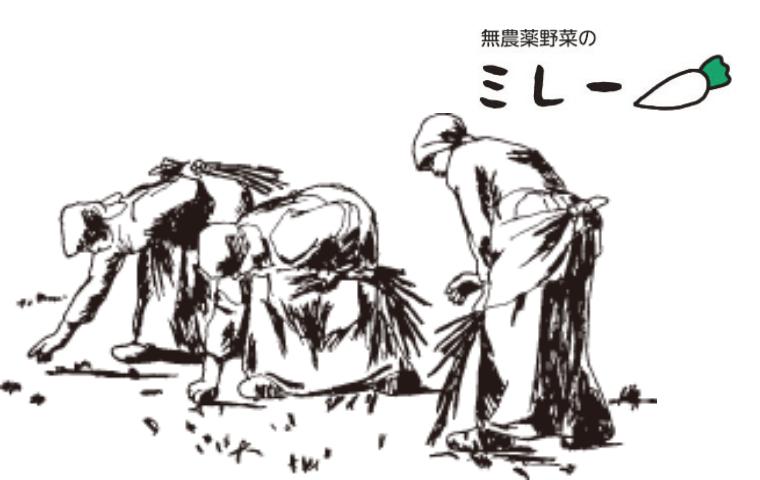 f:id:warakochan:20210125122404p:plain