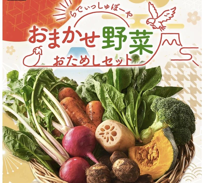 f:id:warakochan:20210125152639j:plain
