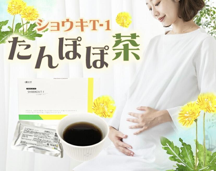 f:id:warakochan:20210407141355j:plain