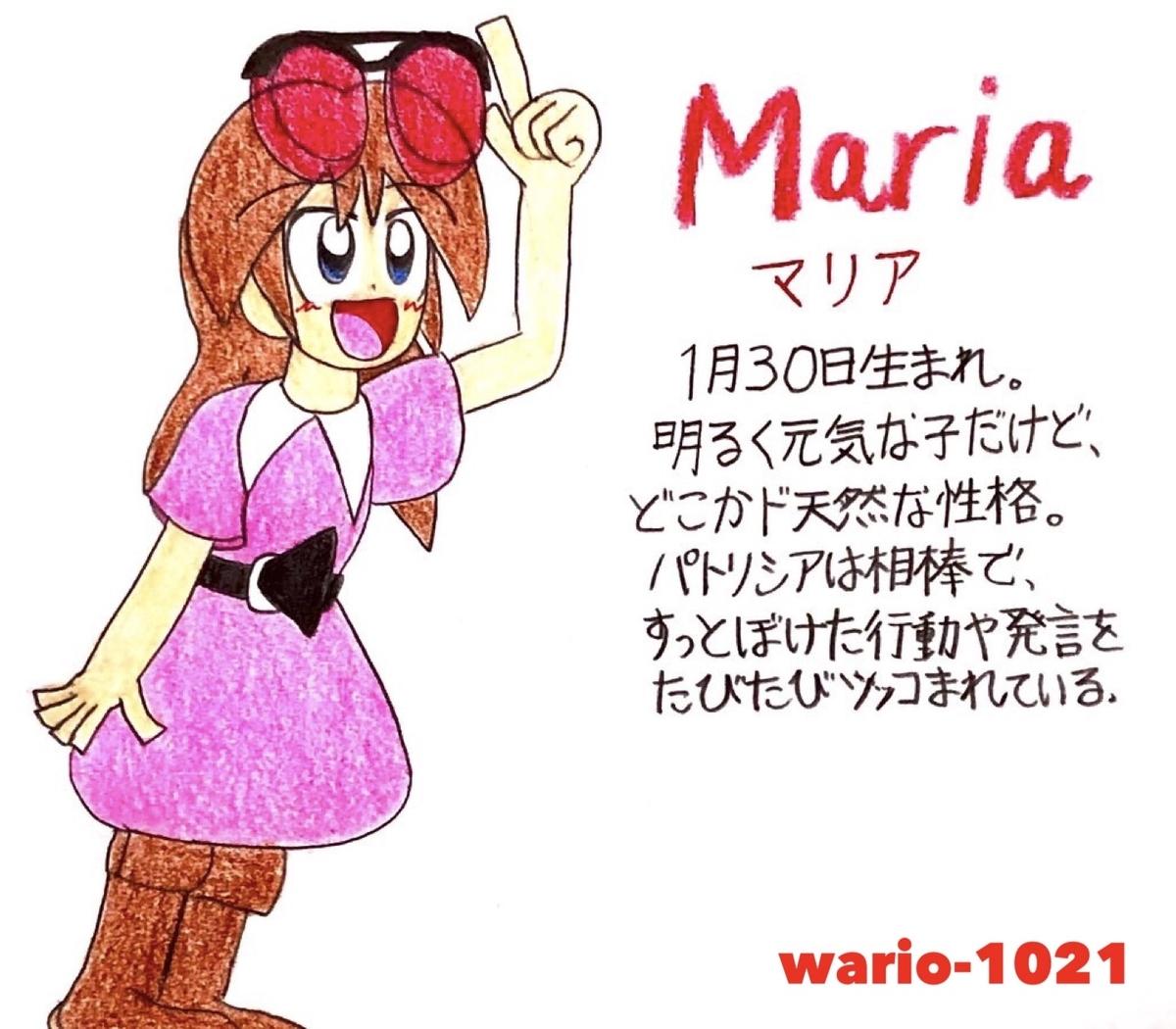 f:id:wario-1021:20201218185400j:plain