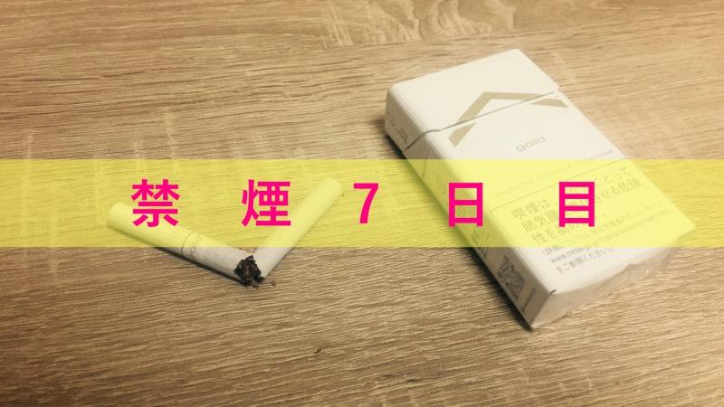 禁煙7日目