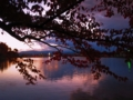 曇り空の間から見えるの朝焼けと紅葉