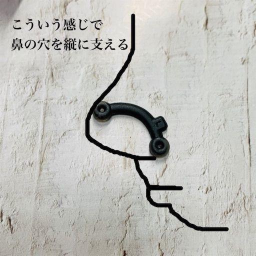 f:id:waruagake:20190424204307j:image