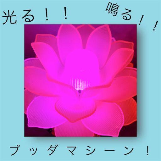 f:id:waruagake:20190616192945j:image