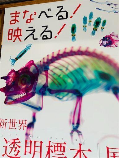 f:id:waruagake:20190722022023j:image