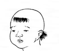 f:id:wasabihoroscope:20200507220804p:plain