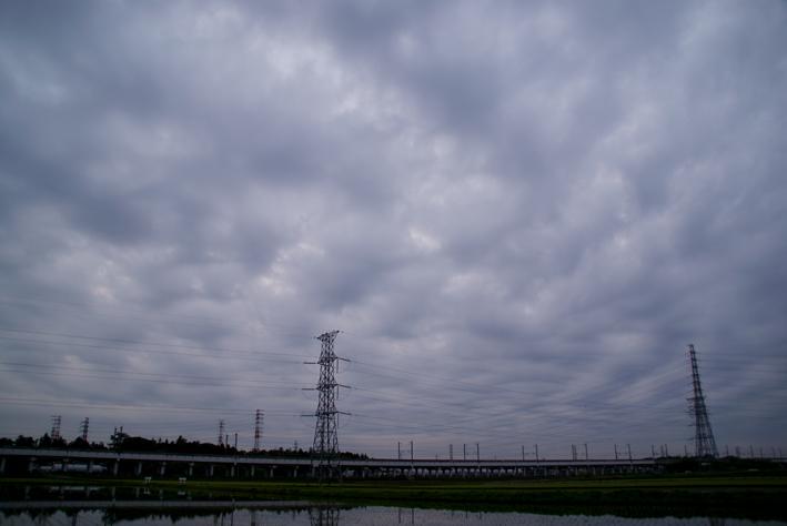 200807283.jpg