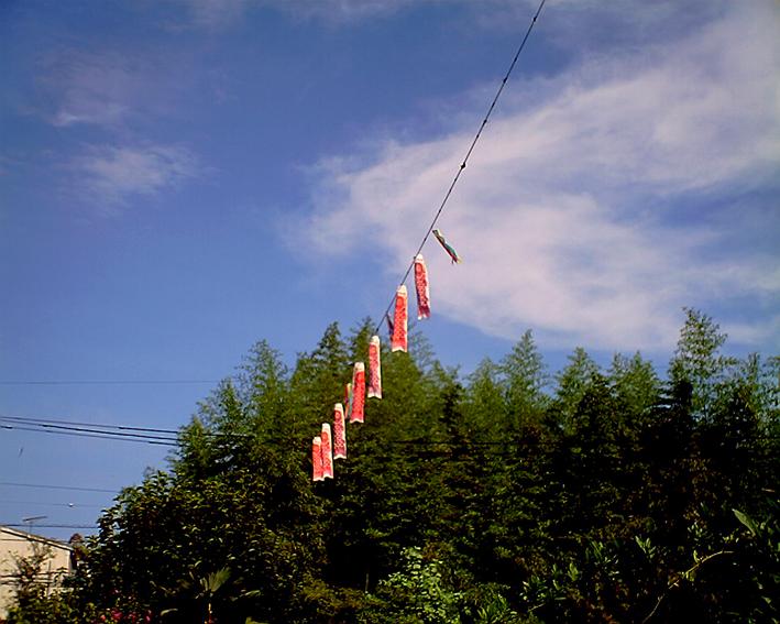 20080819.jpg