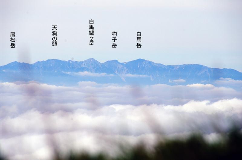 f:id:wasakoki7778:20180819141609j:image:w640