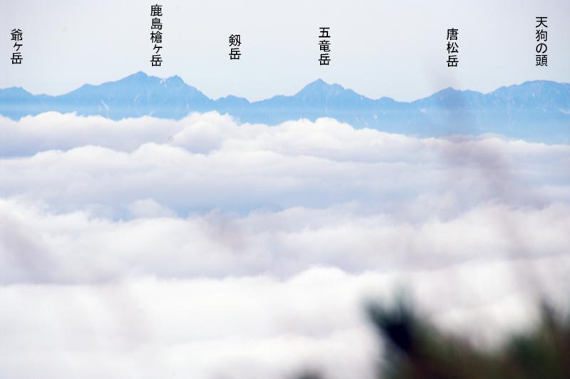 f:id:wasakoki7778:20180819141611j:image:w640