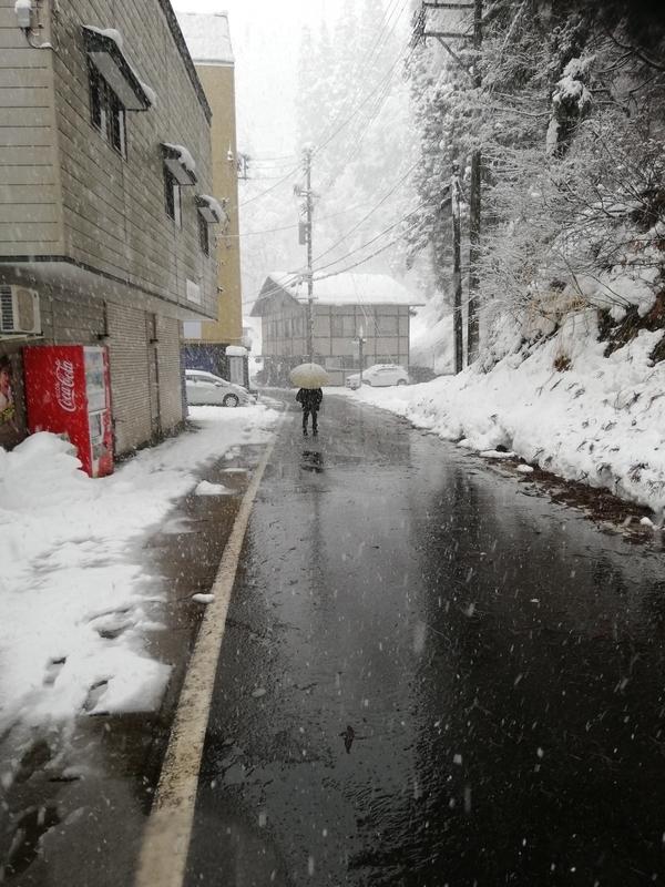 f:id:wasakoki7778:20190103180629j:image:w640