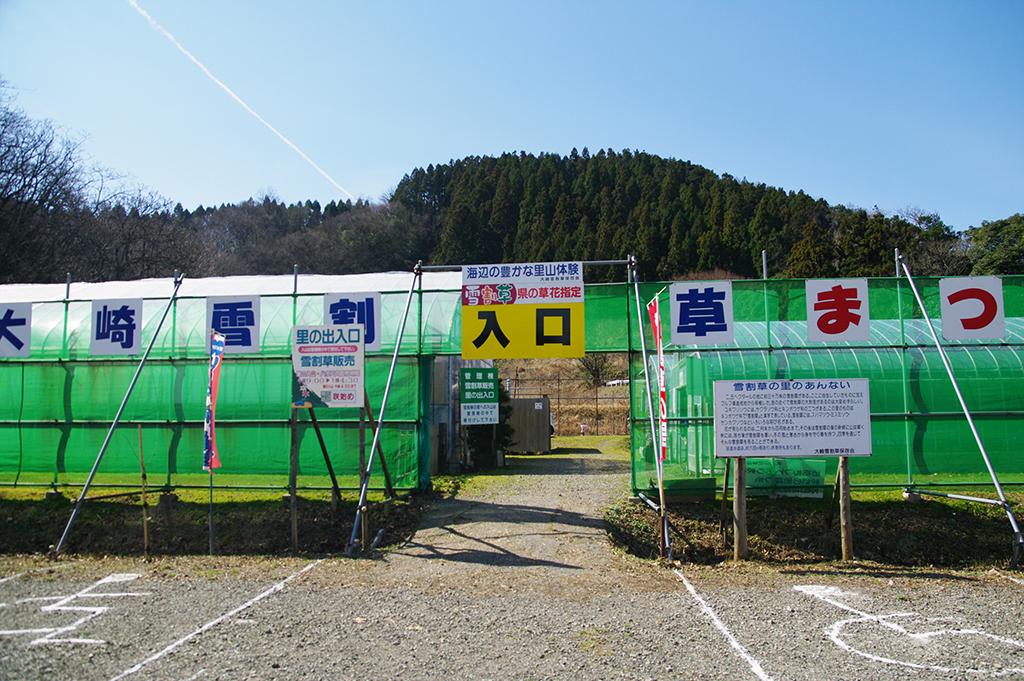 f:id:wasakoki7778:20190310103114j:plain