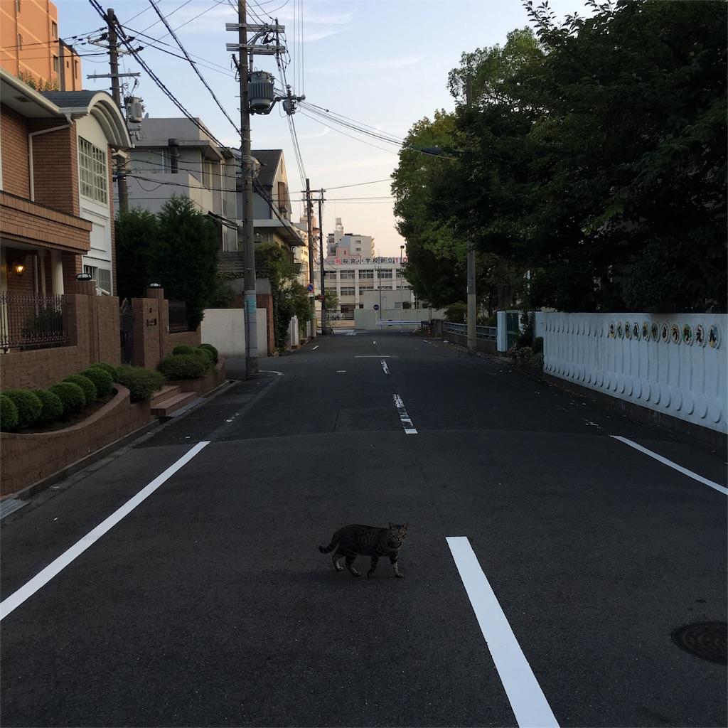 f:id:wasami:20160809221302j:image