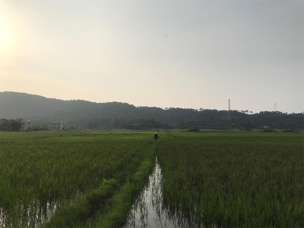 f:id:wasami:20200922182504j:image