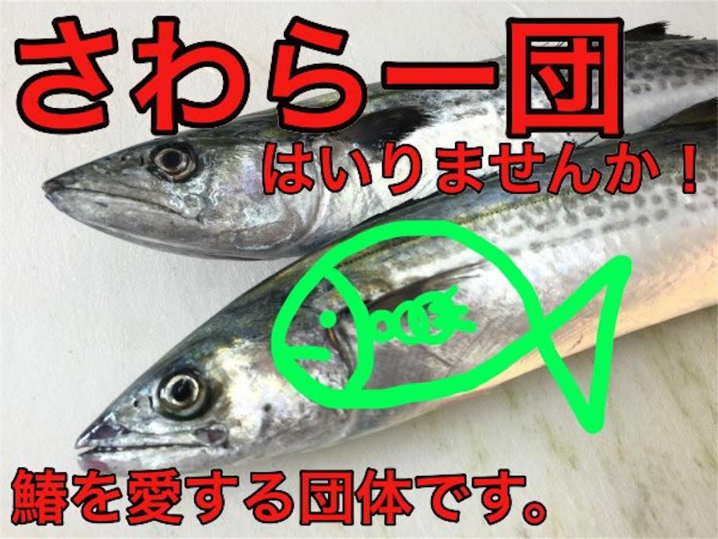 f:id:wasarasan:20181128231215j:image