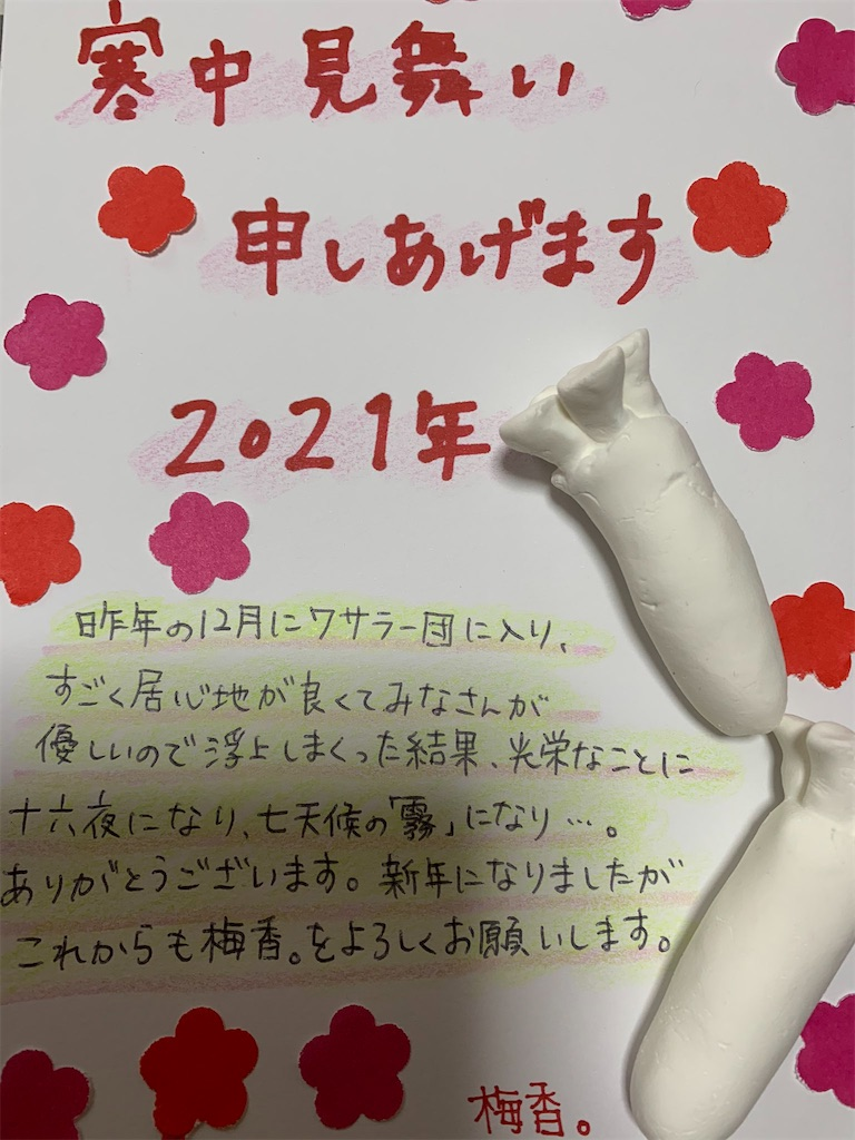 f:id:wasarasan:20210101184106j:plain