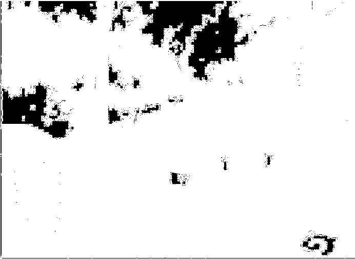 f:id:wasasula:20170123233622p:plain