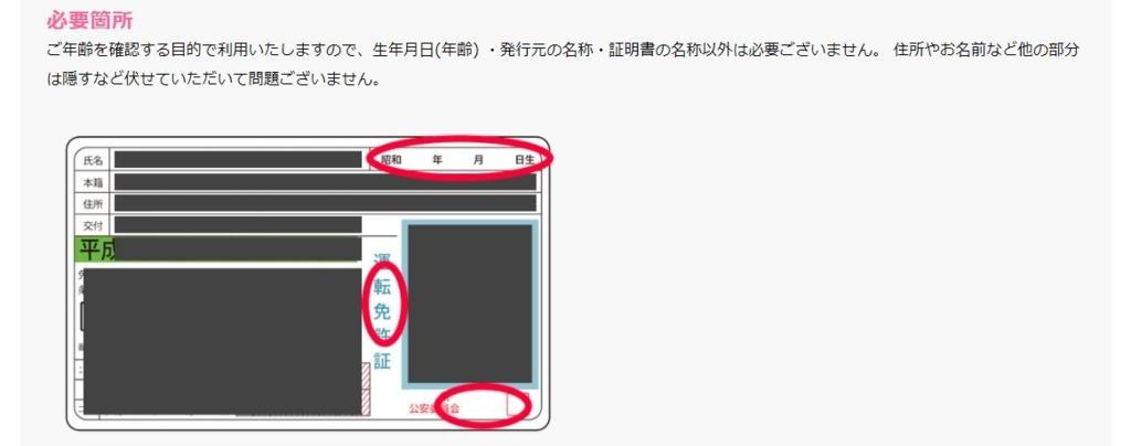 f:id:wasavi0032016:20170911105447j:plain