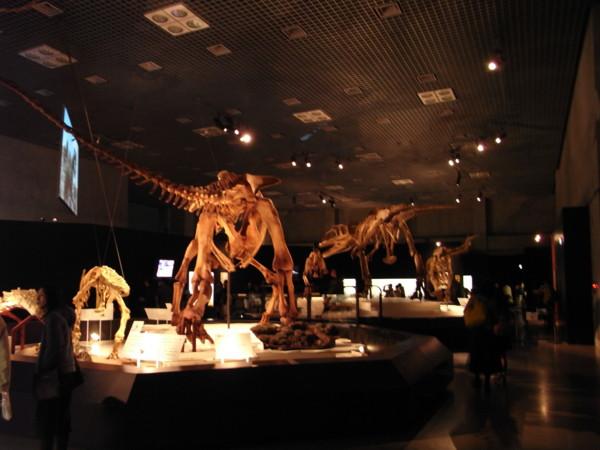 大恐竜展 知られざる南半球の支配者@国立科学博物館