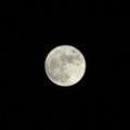 満月(トリミング)