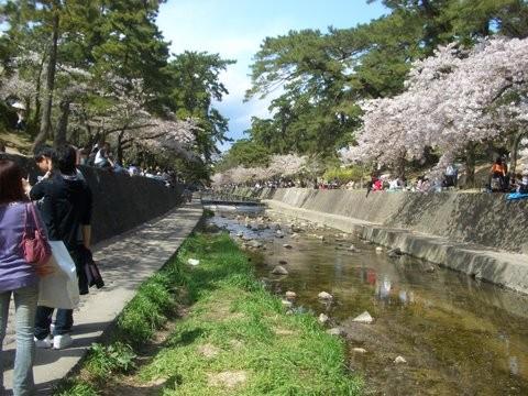 f:id:washi-mizok:20100410141208j:image