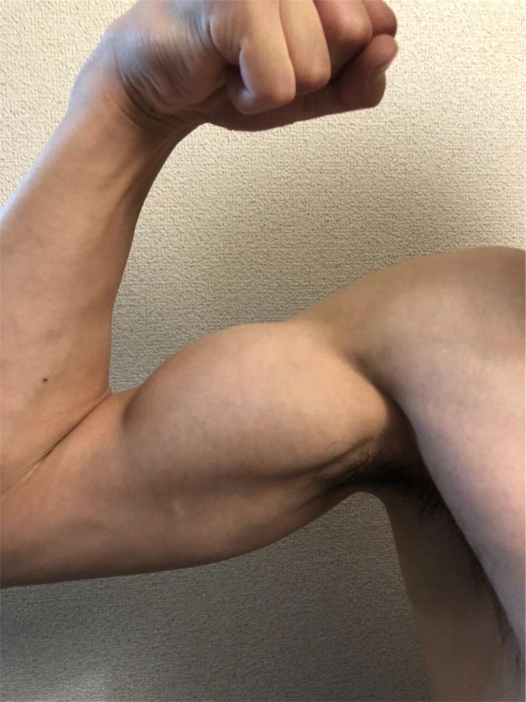 f:id:washizugo:20181121083040j:image