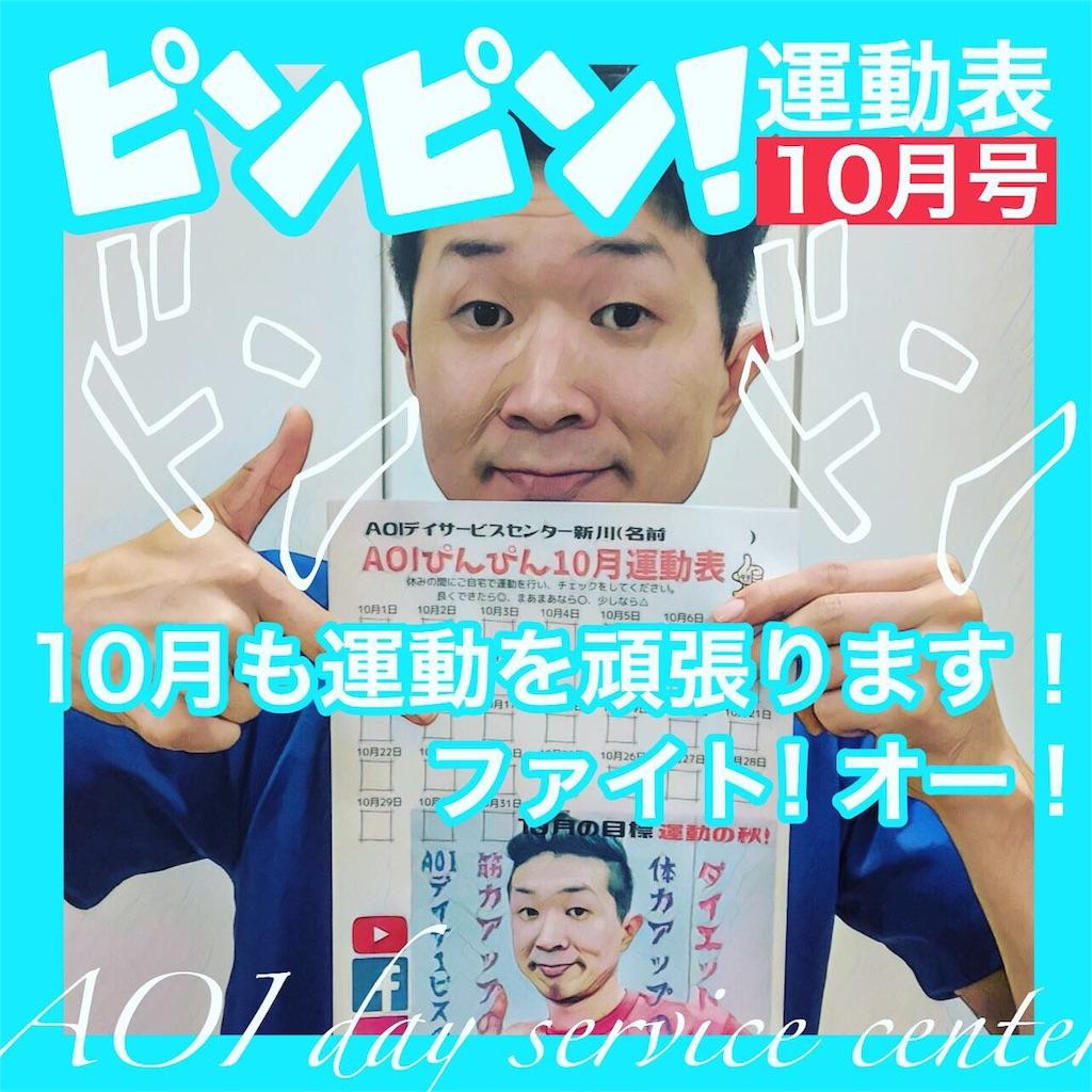 f:id:washizugo:20191102083423j:plain