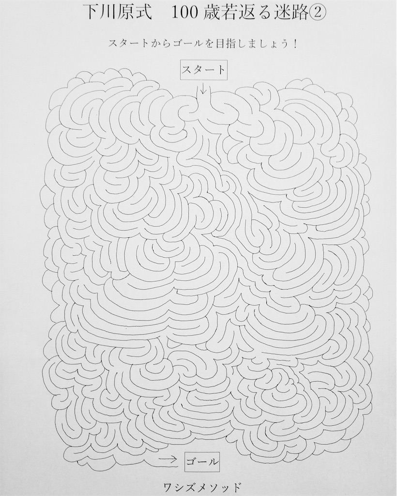 f:id:washizugo:20201118172939j:plain