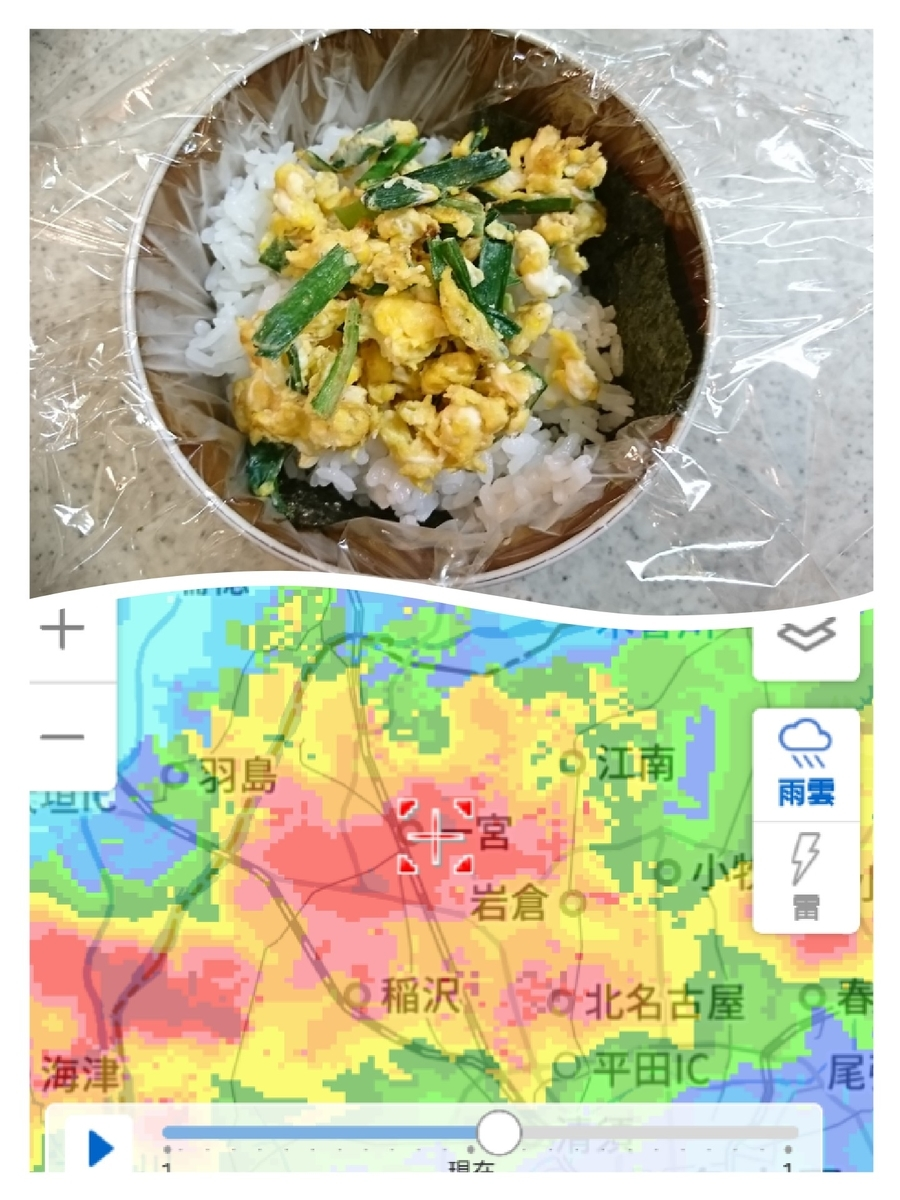 f:id:wasurenagusa7531kuma:20210707223335j:plain