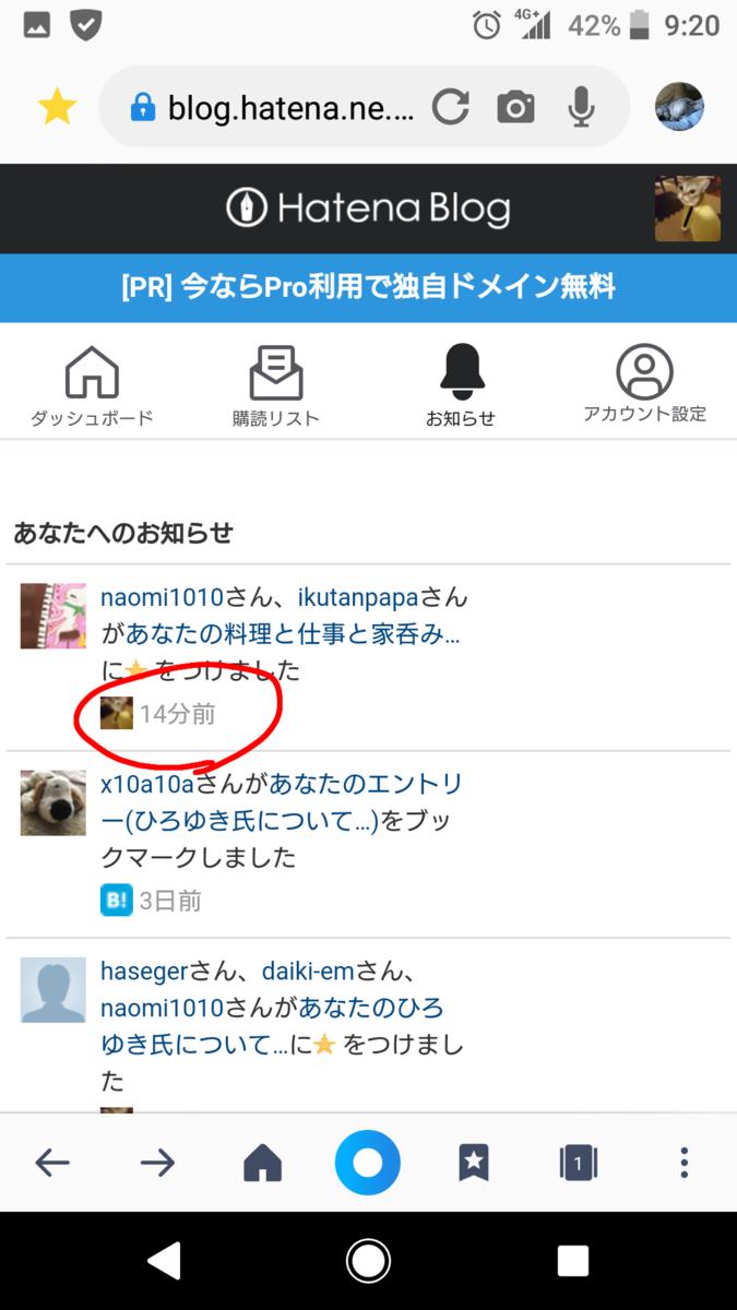 f:id:wasurenagusa7531kuma:20210712122351p:plain
