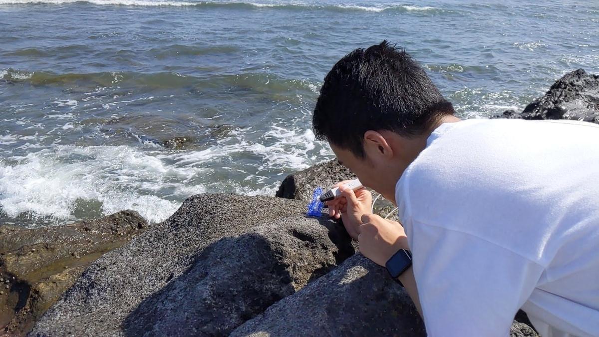 f:id:watagashitarou:20210118120334j:plain
