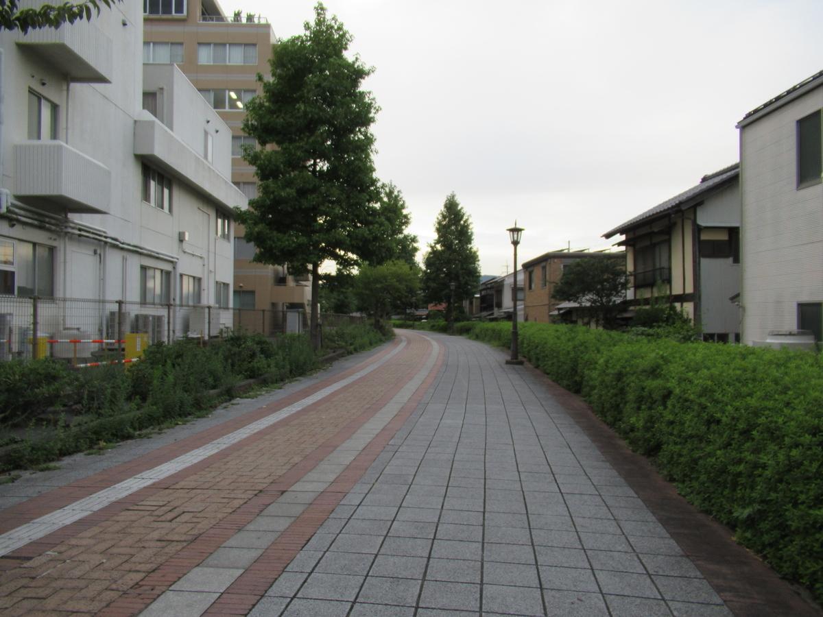 f:id:watakawa:20201116152818j:plain