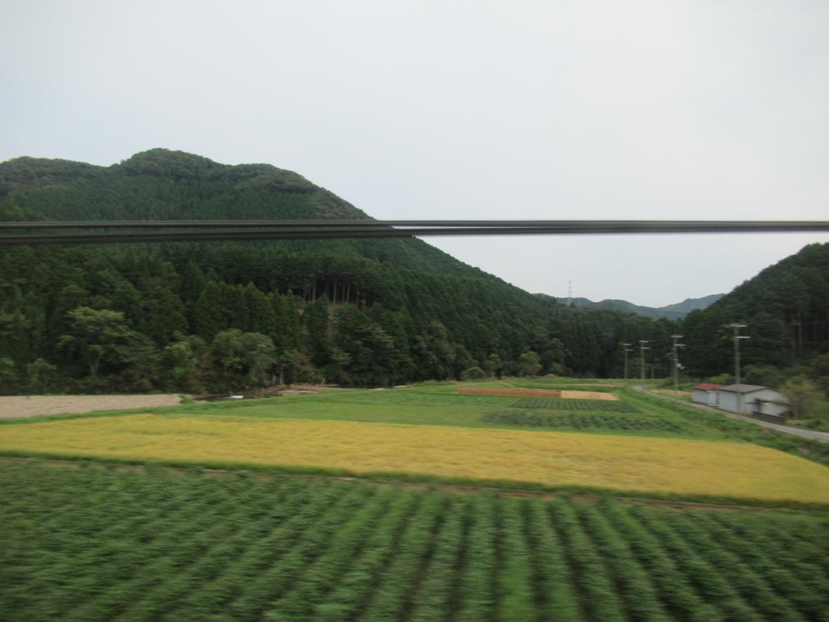 f:id:watakawa:20201126122708j:plain