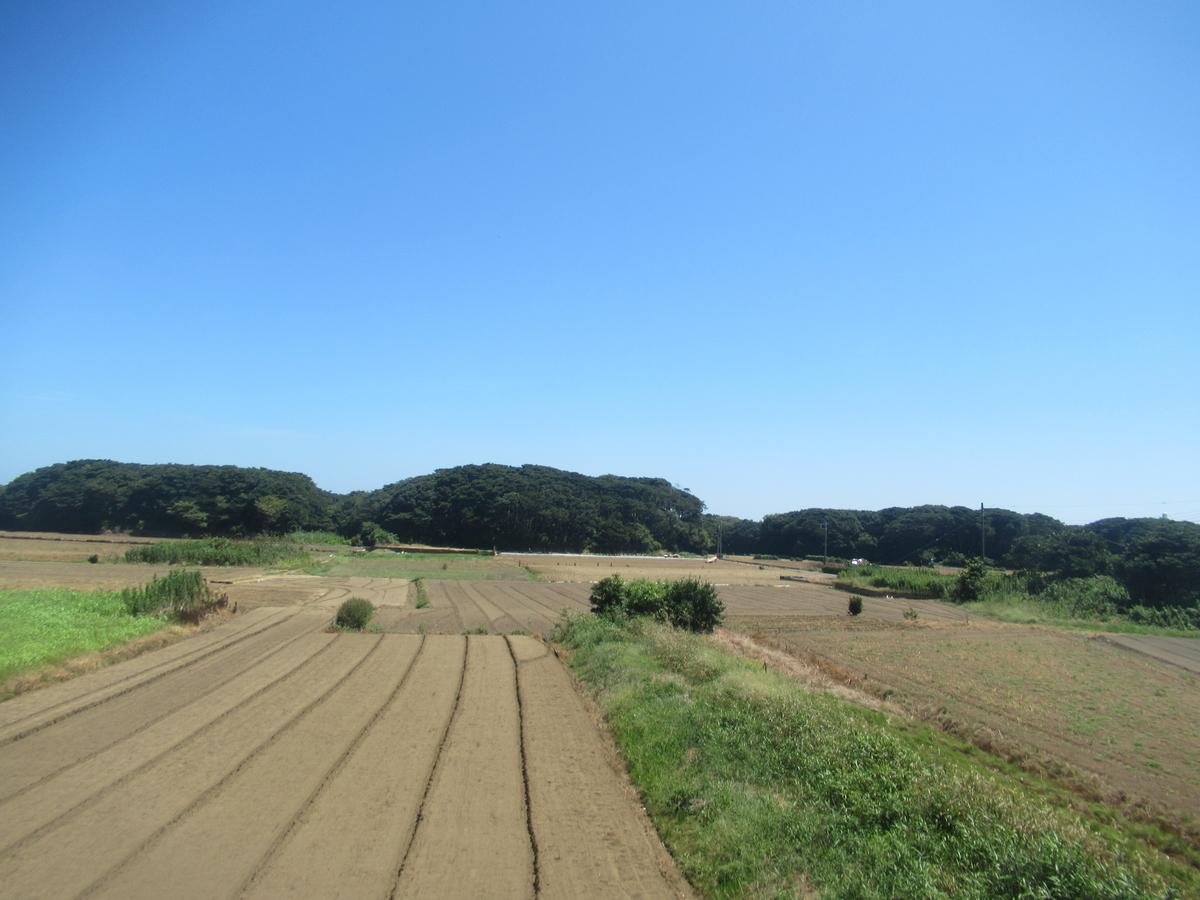 f:id:watakawa:20210220100557j:plain