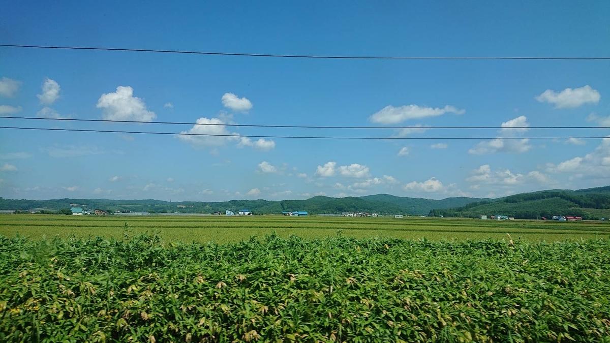 f:id:watakawa:20210812081657j:plain