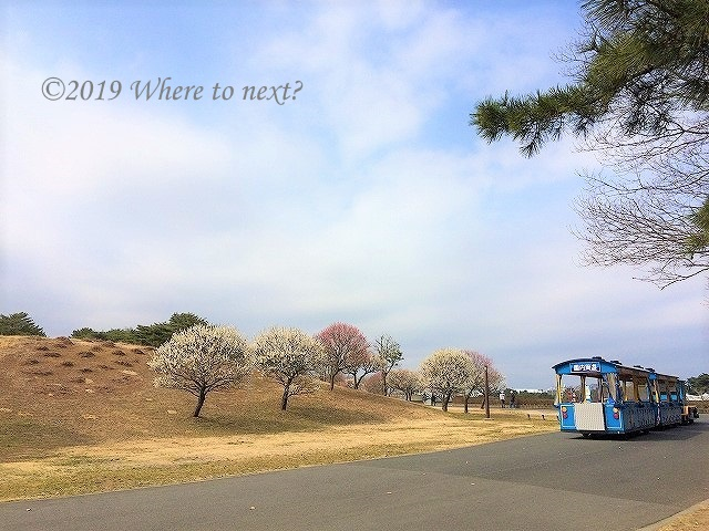 f:id:watanosumiyoshi:20190308185329j:plain