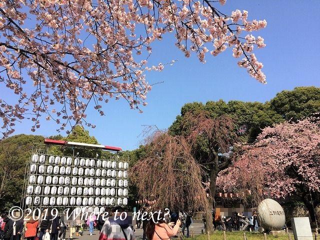 f:id:watanosumiyoshi:20190318181204j:plain