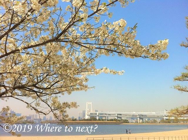 f:id:watanosumiyoshi:20190318231100j:plain