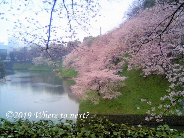 f:id:watanosumiyoshi:20190318231510j:plain