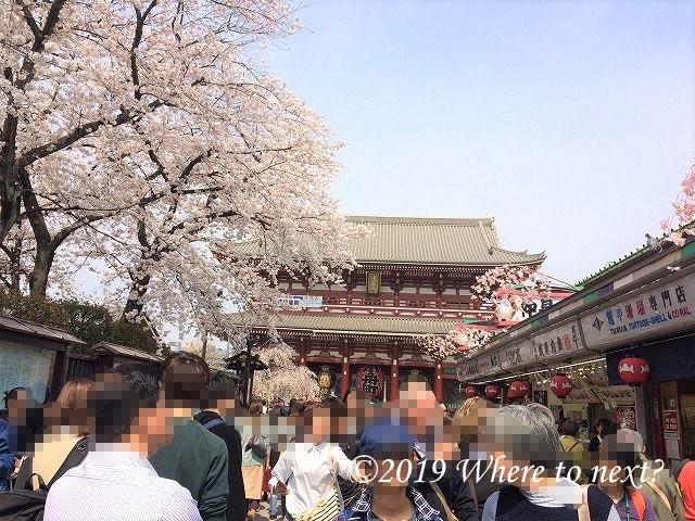 f:id:watanosumiyoshi:20190321232452j:plain