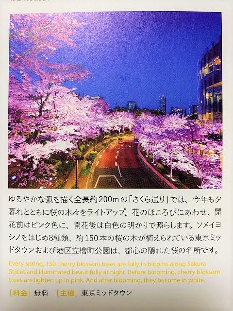 f:id:watanosumiyoshi:20190329002122j:plain