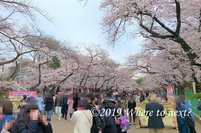 f:id:watanosumiyoshi:20190330220805j:plain