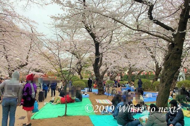 f:id:watanosumiyoshi:20190330220832j:plain