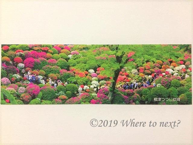 f:id:watanosumiyoshi:20190417212612j:plain