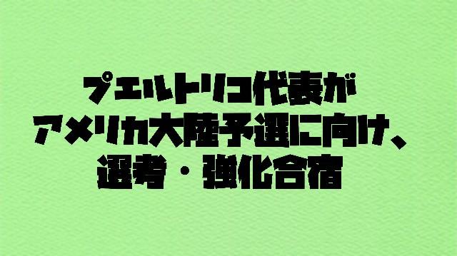 f:id:wataridori73:20210408194942j:image