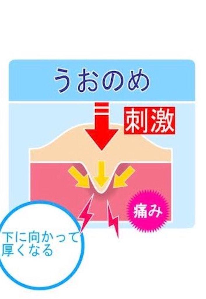 f:id:watashi-iro:20190211145450j:image