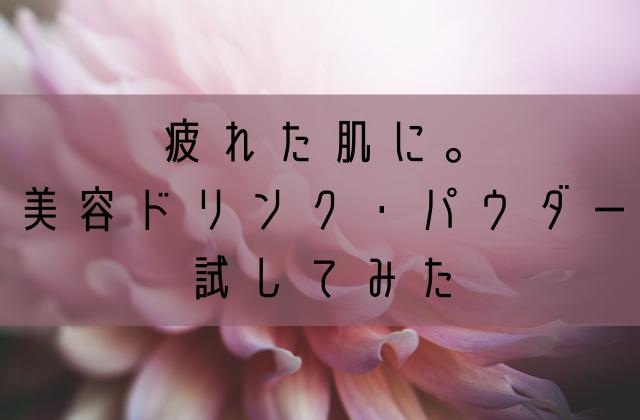 f:id:watashi2525:20201012205655p:plain