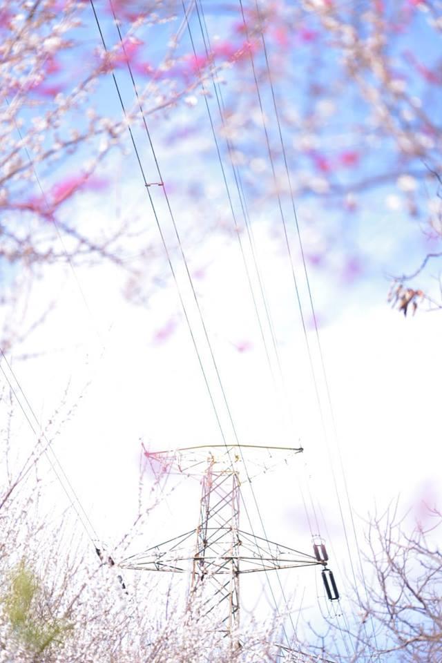 f:id:watashiaruki:20170228133726j:plain
