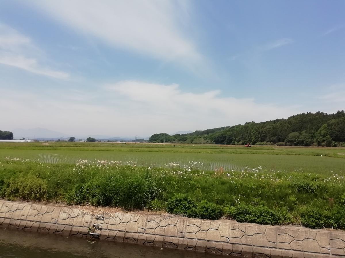 氏家の田園風景