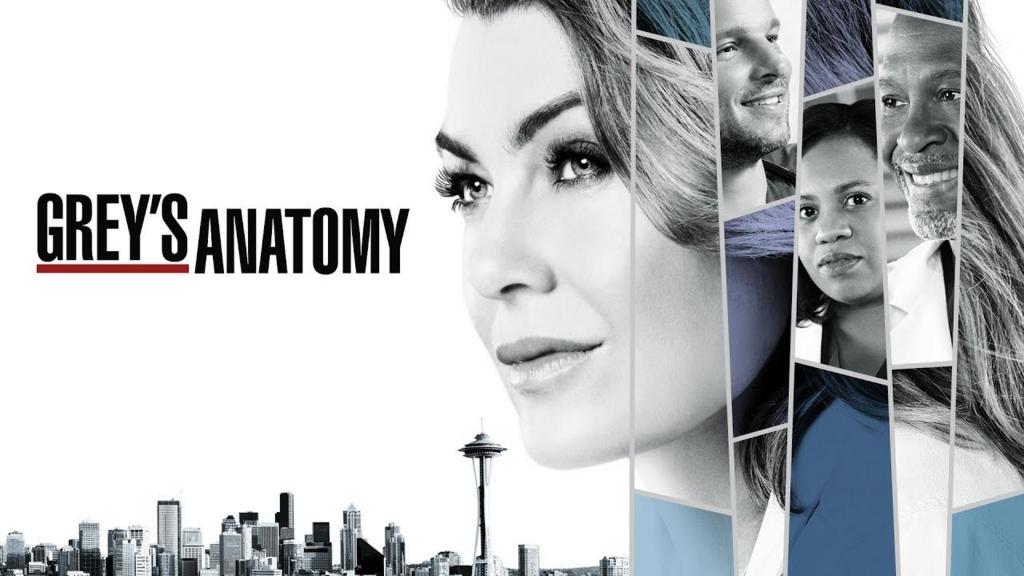 Grey\'s Anatomy Season 14 Episode 13 - watchseasonepisodeonline\'s blog